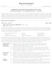 Corporate Resume Examples Financial Executive Vice President Of Finance Sample