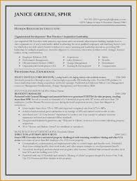 Best Resume Writing Services In Nyc Professional Essay Help ...