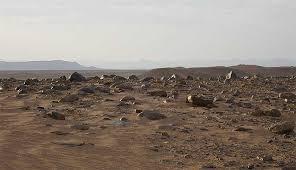 Hamada Or Rocky Plateau