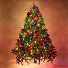 Christmas Tree Multicolor Lights Fir Decorated Trees With