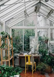 How To Look After Your Plants Urban GardeningSunroom OfficeTo