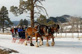 Studts Pumpkin Patch Grand Junction by Pagosa Springs Announces Top Off Slope Winter Adventures For A