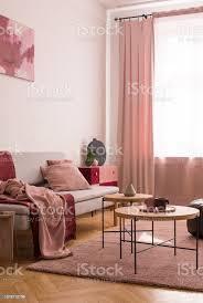 tabelle auf rosa teppich im wohnzimmer interieur mit decke auf grauen sofa und vorhänge am fenster echtes foto stockfoto und mehr bilder decke