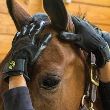 Rubber Horse Shedding Tool by Handson Grooming Gloves In Grooming Gloves U0026 Mitts At Schneider