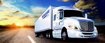 100 International Semi Trucks For Sale Bare Truck Center Isuzu Truck Dealer Heavy