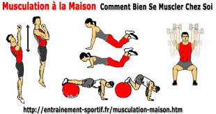 musculation à la maison comment se muscler efficacement chez soi