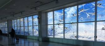 Navigating Oakland Airport With Kids Mural In Terminal 2 Walkway