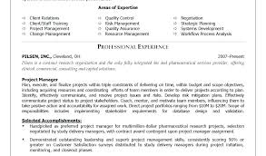 Marketing Resume Objective Statement Project Manager Examples Construction