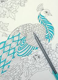 Blue Added To The Peacock Coloring Page