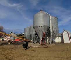 Silo Christmas Tree Farm Temple by Callens Honey Farm Providing You With Nature U0027s Best Sweetener