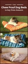 Chewproof Dog Bed by Best Chew Proof Dog Bed To Buy From Amazon Dog Guide 4u