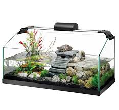 best 25 turtle habitat ideas on pinterest tortoise habitat