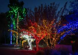 Phoenix Zoo Lights Coupons Srp : Modells Coupon Code 2018 Halloweens Best Ghost Trains And Spooky Rides For La Kids Family Friendly Events In Los Angeles New Years Eve Greater Zoo Association Ca Oakland E Cig City Coupon Code Nutrisystem Stack Coupons Bridal Shops Tampa Bay Area Paper Chase Press Discount Klook Summer Code Yeh Ispe Trip Karo Boo At The Nights Saint Louis Lights Tickets Now On Sale Denver Chicago Holiday Tour Trolley Losangeles
