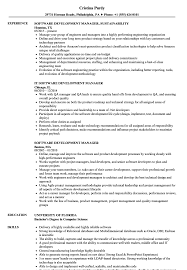 Download Software Development Manager Resume Sample As Image File