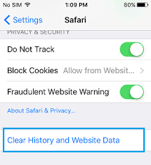 Clear History Option Grayed Out in Safari iPhone