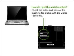 Identifiers and Serial Number Help CheckMEND US