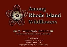 Among Rhode Island Wildflowers By William Whitman Bailey