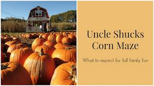 Atlanta Pumpkin Patch Corn Maze by Uncle Shucks Corn Maze What You Should Expect On This Fall Adventure