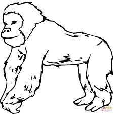 Unique Gorilla Coloring Page 92