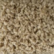 Chenille Carpet by Cavco West Carpet