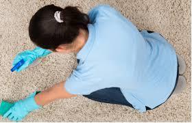 comment nettoyer du vomi sur un canap en tissu odeur de vomi tout pratique