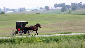 Country Road Near Kalona, Iowa...Amish Bakery, Grocery Store ... Amish Horses April 2016 For Sale Featured Listings Kalona Homes For Property Search In Single Familyacreage Sale Iowa 20173679 Tours Chamber September 2014 Ia Horse Auction Pictures Of Amana Colonies Day Trip To Girl On The Go