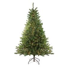 Northlight 6 Pre Lit Canadian Pine Artificial Christmas Tree