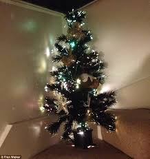Small Fibre Optic Christmas Trees Uk by Mailonline Readers Share Photos Of Their Early Christmas Trees