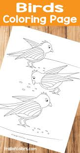 Birds Coloring Page For Kids