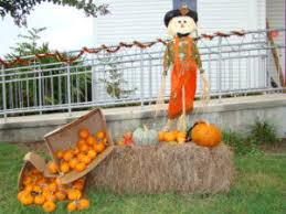 Pumpkin Patch San Jose 2015 by Pumpkin Patches In Northeast Florida 2017 Northeast Florida Life