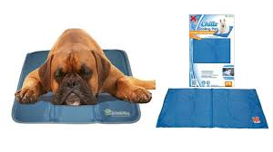 Kh Cool Bed Iii by Top 5 Best Cooling Pads For Dogs Reviews Youtube
