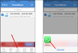 How To Send Music Files on Whatsapp iPhone – Tech Brij