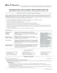 Best Resume Objective Statements Picture Examples Templates Statement