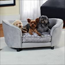 Wayfair Leather Sleeper Sofa by Furniture Awesome Wayfair Sectional Sofa Couches Wayfair Chairs