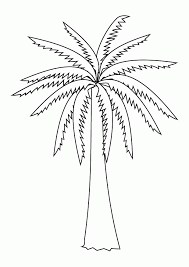 Palm Tree Coloring Page Images Pictures