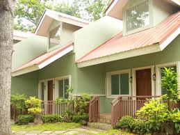 100 Residences At Forest Park The Resort Bungalow Bacolod Negros Occidental