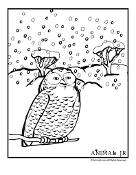 Christmas Coloring Pages Winter Make A Photo Gallery Animals
