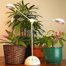 Amazing Plant Grow Lights For Indoor Plant Grow Lights Light
