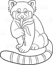 Coloring Pages Little Cute Red Panda Eats Leaves Stock Vector Art Royalty The Sea Page Free