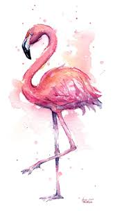 25+ Unique Flamingo Color Ideas On Pinterest | Flamingo Birthday ... Flamingo Fly Notoriously Dapper Liiife Hashtag On Twitter 547 Best Road Images Pinterest Flamingos Bookends 1764 Pink Flamingoes Are Not Trashy Barnes Realjdiddy 25 Unique Color Ideas Birthday Stormy Monday Presents At Bulls Head Barnes Ldon 02 Oct 2017 10 Gorgeous Pics To Celebrate Day Veriy 76 Pink Flamingo Shirt Me Feat My Dog Youtube Curreny Type Beat Free Beat Prodmassology Real_trademark