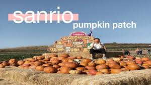 Irvine Pumpkin Patch Tanaka by Hello Kitty Pumpkin Patch Youtube