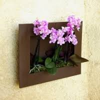 les contenants pots et cache pots pour orchidée orchidee facile