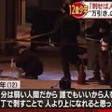 送致, 児童相談所, 北海道警察, 非行, 殺人罪, 事件, 札幌市