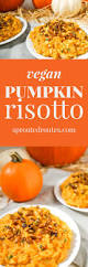 Whole Hog Pumpkin Ale Clone by Creamy Pumpkin Risotto With Sweet And Spicy Roasted Pepitas Vegan