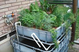 Types Of Systems – Backyard Aquaponics Project Hydroponic Home Garden Backyard Food Solutionsbackyard Oc Aquaponics Project Admin What Is Learn About Aquaponic Plant Growing Photos Friendly Picture With Amusing Systems Grow 10x The Today Bobsc Ezgro Amazoncom Vertical Gardening Vegetable Tower Indoor Outdoor From Fish To Ftilizer Greenhouse Im In My City Back Yard Yes I Am Satuskaco
