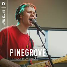 Angelina Pinegrove
