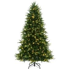 BARCANA 81033075LEDWWP 75 Alaskan Fir With Warm White LED Lights