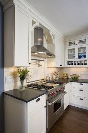 Exposed Range Hood Kitchen Traditional With Pot Filler Stainless Applainces Chimney