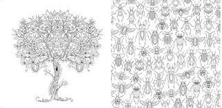 Adult Coloring Books Secret Garden