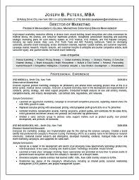 Resume For Executive Director Best Of Sales Format Marketing